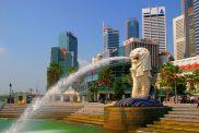 dang-ky-bao-ho-nhan-hieu-tai-singapore