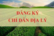 Dang Ky Chi Dan Dia Ly