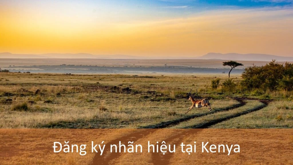 Đăng Ký Nhãn Hiệu Tại Kenya